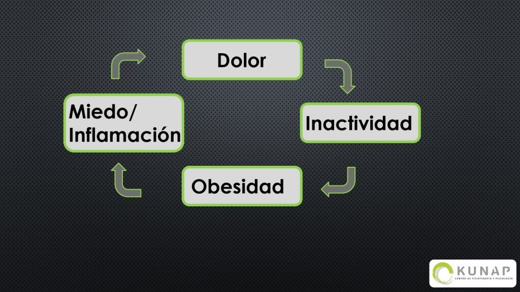 fisioterapia-obesidad-dolor-4-1024x576